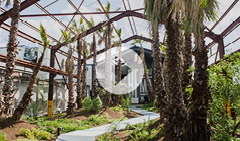Ballymore hosts London Festival of Architecture tour of Goodluck Hope
