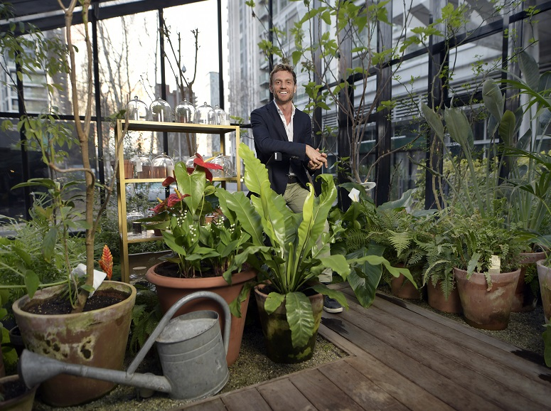 Biophilia: one small step in the quest for greener living