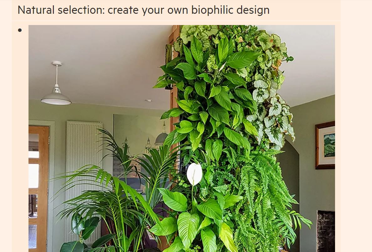 How biophilic design brings the outdoors in