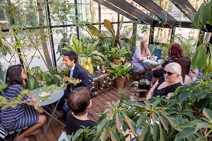 Wardian hosts a series of botanical afternoon teas