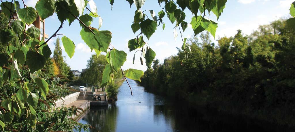 Royal Canal Park